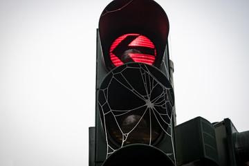 Rote Ampel mit Spinnweben