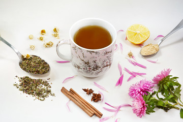 Cup of healthy tea, honey, healing herbs, herbal tea assortment on white background