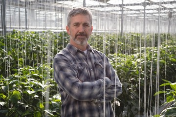 Man standing with arms crossed in greenhouse