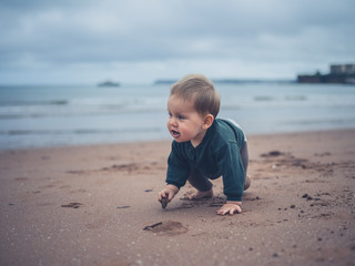Little baby crawling on the beach