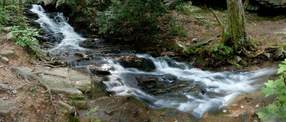 A small stream flows through the woods of Talladega National Forest in Alabama, USA