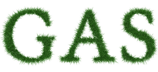 Gas - 3D rendering fresh Grass letters isolated on whhite background.