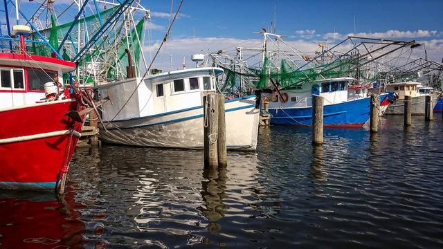Shrimp Fishing Boats in Harbor in Biloxi, Mississippi