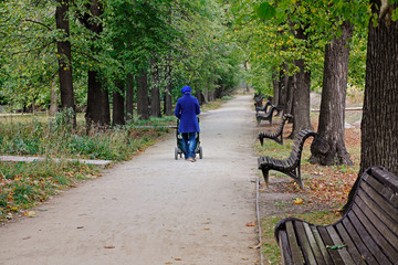 Rear view of mother walking with baby stroller in park