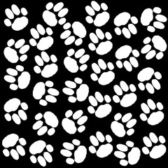 Dog paws background black and white.