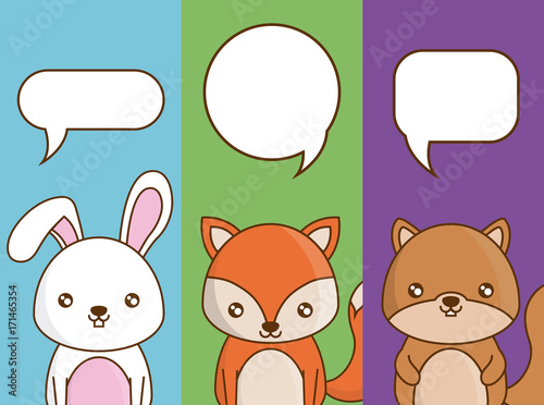 cute animals with speech bubbles over colorful background