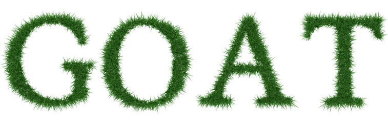 Goat - 3D rendering fresh Grass letters isolated on whhite background.