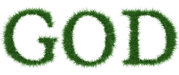 God - 3D rendering fresh Grass letters isolated on whhite background.