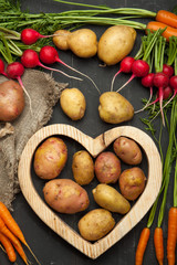 Carrots, radishes and potatoes on a black wooden background