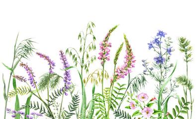 Watercolor wild flowers border Wall mural