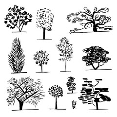 Set of trees. Black and white