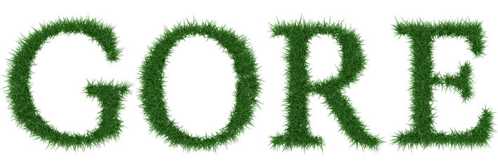 Gore - 3D rendering fresh Grass letters isolated on whhite background.