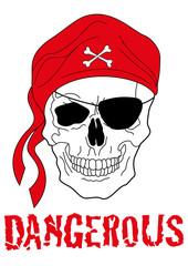 teschio pirata