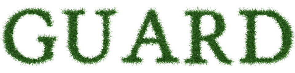 Guard - 3D rendering fresh Grass letters isolated on whhite background.