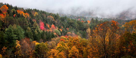 Fall mountain landscape in New England. Colorful foliage. Misty fog in the background. Banner format