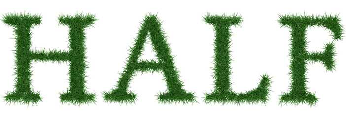 Half - 3D rendering fresh Grass letters isolated on whhite background.