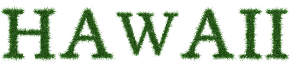 Hawaii - 3D rendering fresh Grass letters isolated on whhite background.