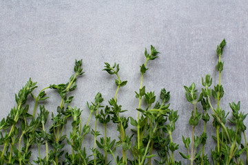 Food background: thyme herb on a grey kitchen table