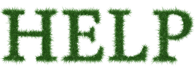 Help - 3D rendering fresh Grass letters isolated on whhite background.
