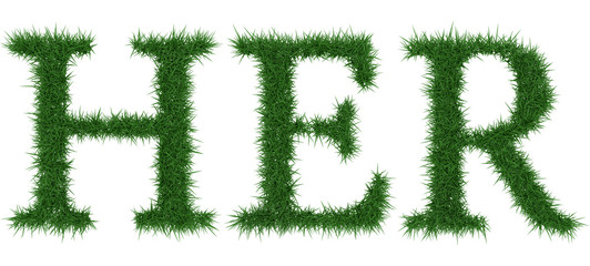 Her - 3D rendering fresh Grass letters isolated on whhite background.