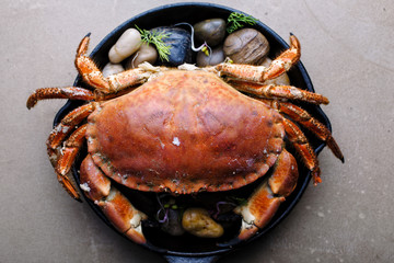 Cooked brown crab in a skillet. Whole crab