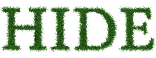 Hide - 3D rendering fresh Grass letters isolated on whhite background.