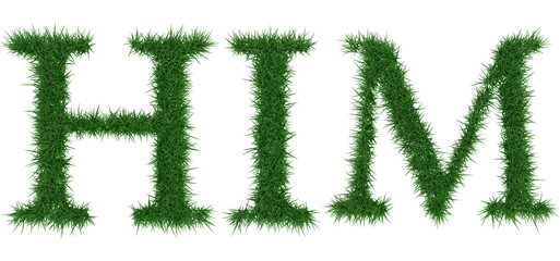 Him - 3D rendering fresh Grass letters isolated on whhite background.