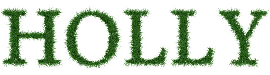 Holly - 3D rendering fresh Grass letters isolated on whhite background.