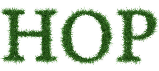 Hop - 3D rendering fresh Grass letters isolated on whhite background.