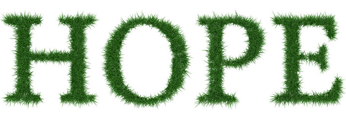 Hope - 3D rendering fresh Grass letters isolated on whhite background.