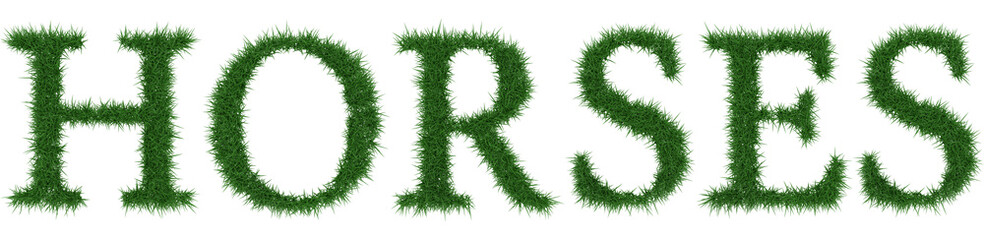 Horses - 3D rendering fresh Grass letters isolated on whhite background.
