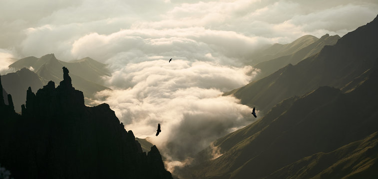 A landscape under cloud cover at sunrise with big spired mountains and silhouetted cape vultures flying above.