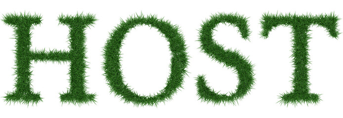 Host - 3D rendering fresh Grass letters isolated on whhite background.