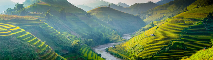 rice fields on terraces in Northwest of Vietnam.