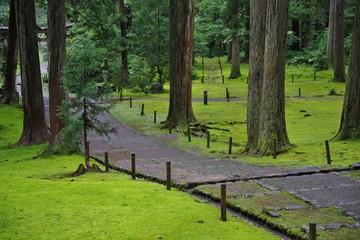 苔が有名な福井県の平泉寺白山神社