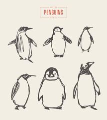 Set penguins hand drawn vector illustration sketch