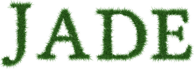 Jade - 3D rendering fresh Grass letters isolated on whhite background.
