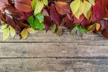 Leaves on wooden boards