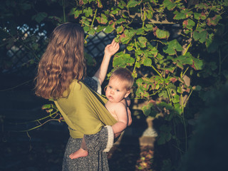 Mother with baby touching grapes in garden
