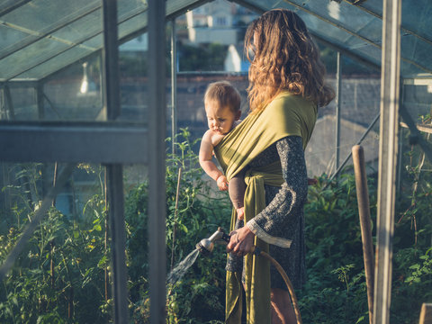 Mother with baby watering tomatoes