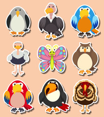 Sticker design with different kinds of birds
