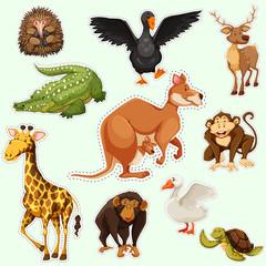 Sticker design with animals on green