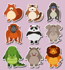 Sticker design with cute animals