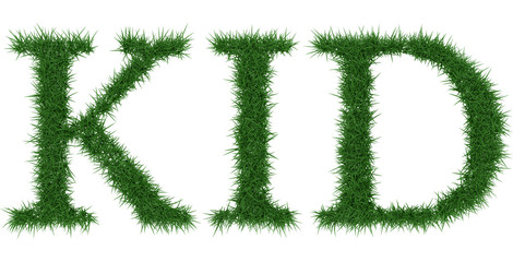 Kid - 3D rendering fresh Grass letters isolated on whhite background.