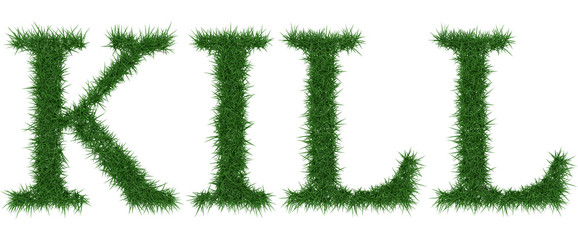 Kill - 3D rendering fresh Grass letters isolated on whhite background.