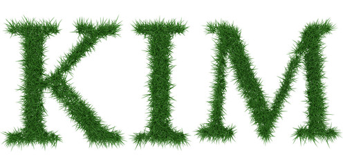 Kim - 3D rendering fresh Grass letters isolated on whhite background.