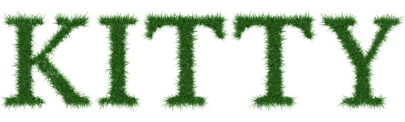 Kitty - 3D rendering fresh Grass letters isolated on whhite background.
