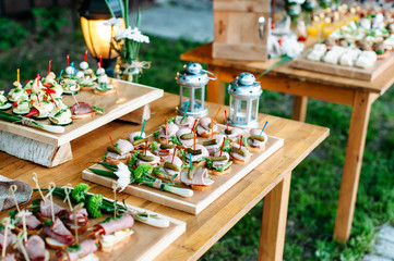 Delicious catering banquet buffet table decorated in rustic style in the garden. Different snacks, sandwiches. Outdoor.