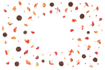 Autumn frame. Viburnum berries, dried branches, pine cone, autumn acorn, flowers on white background. Flat lay, top view