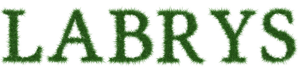 Labrys - 3D rendering fresh Grass letters isolated on whhite background.